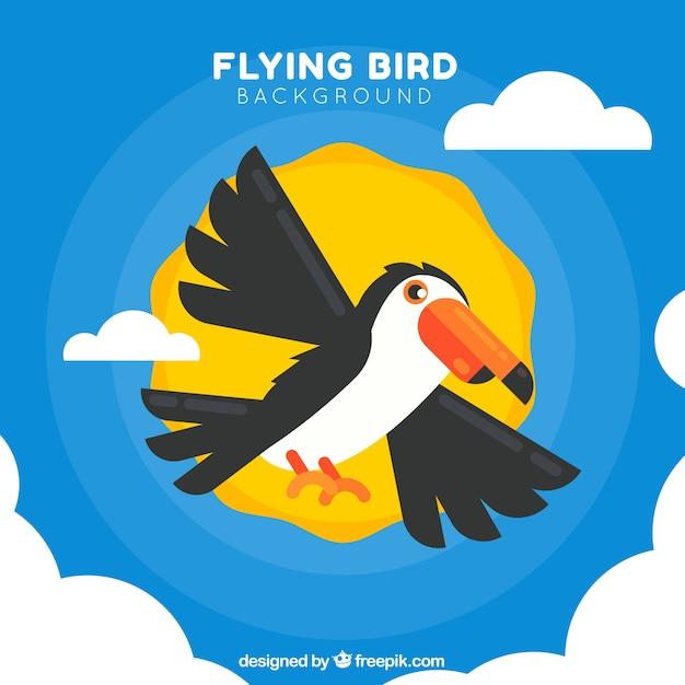 Fundo voador toucan Vetor grátis