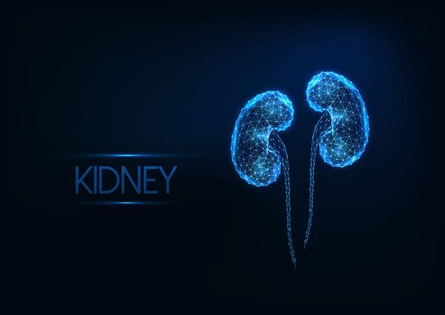 Futuristas brilhantes baixos rins humanos poligonais isolados em fundo azul escuro. Vetor Premium