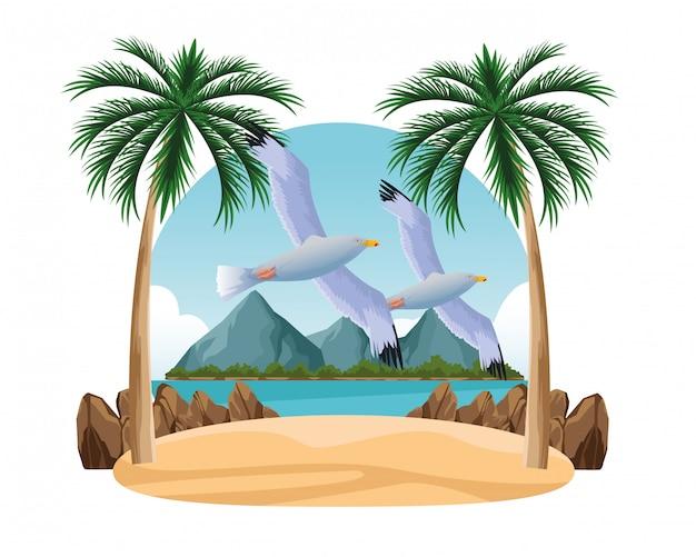 Gaivotas pássaros voando dos desenhos animados Vetor Premium