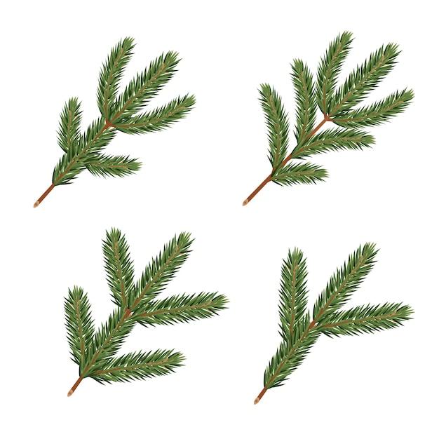Galhos de pinheiro. elementos de decoração de natal realista. Vetor Premium