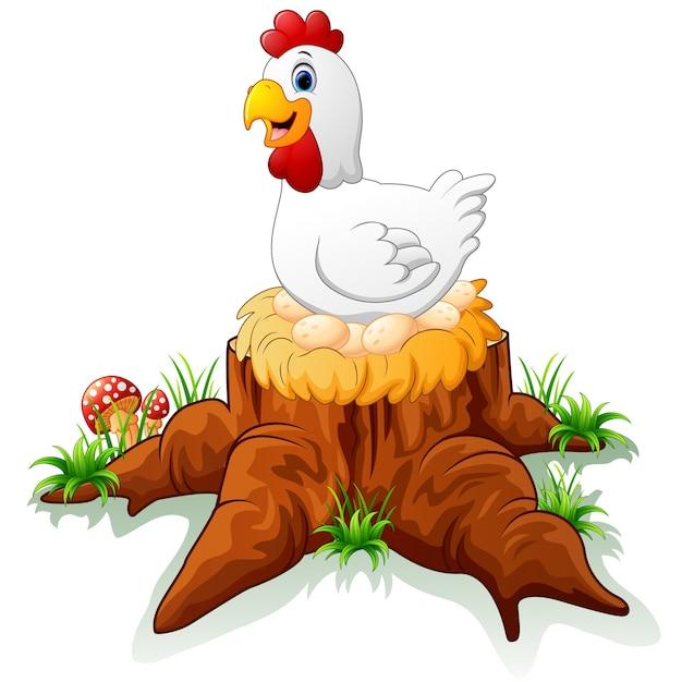 galinha chocando o ovo dela no toco baixar vetores premium