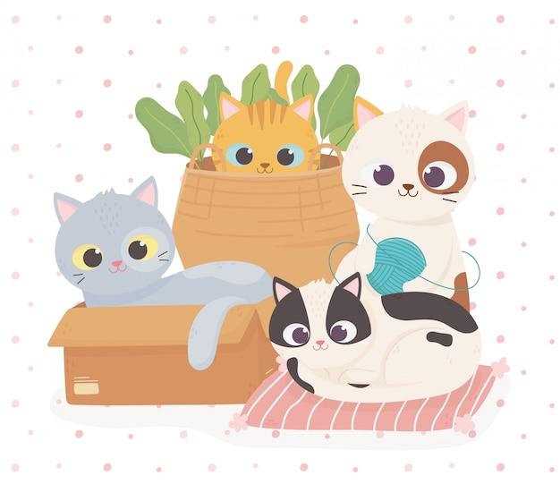 Gatos bonitos de estimação na almofada da caixa e cesta com ilustração dos desenhos animados de bola de lã Vetor Premium