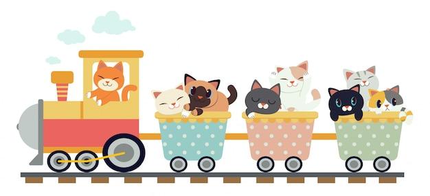 Gatos bonitos em um trem Vetor Premium