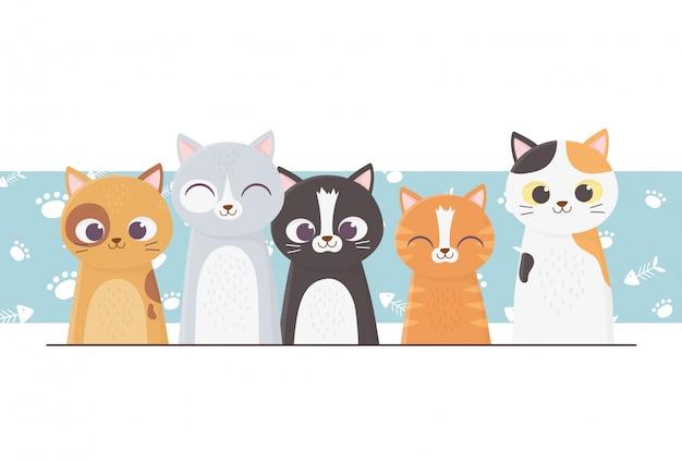 Gatos de estimação differents com ilustração de desenhos animados de fundo de patas Vetor Premium