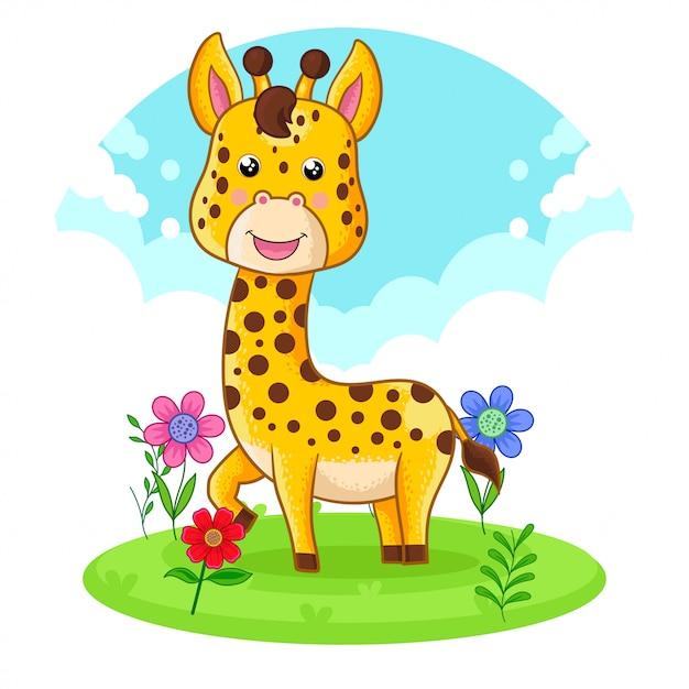 Girafa bonito que está em um prado da flor. Vetor Premium