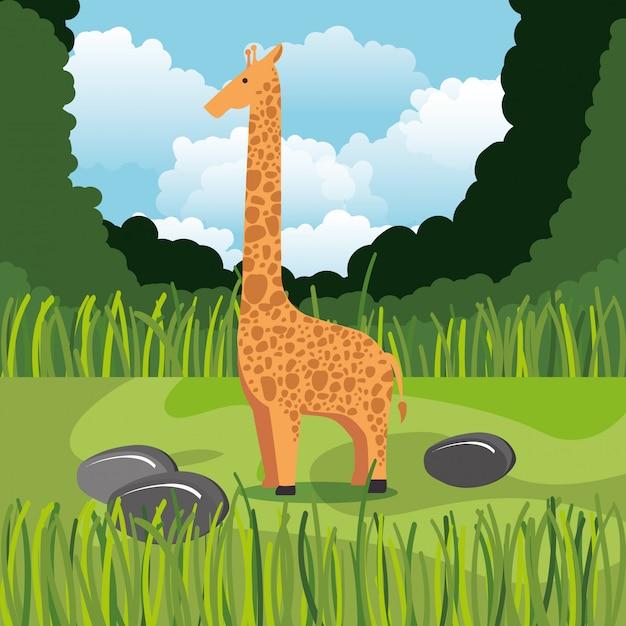 Girafa selvagem na cena da selva Vetor grátis
