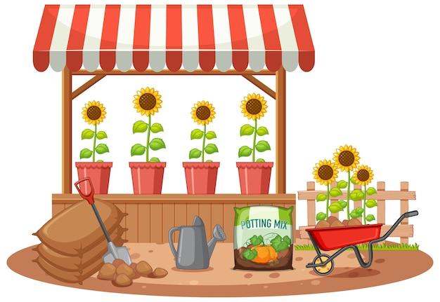Girassol orgânico na loja Vetor Premium