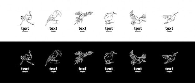 Gráficos de lápis desenhados à mão, conjunto de pássaros Vetor Premium