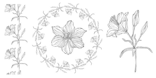 Gráficos vetoriais de uma composição floral Vetor Premium