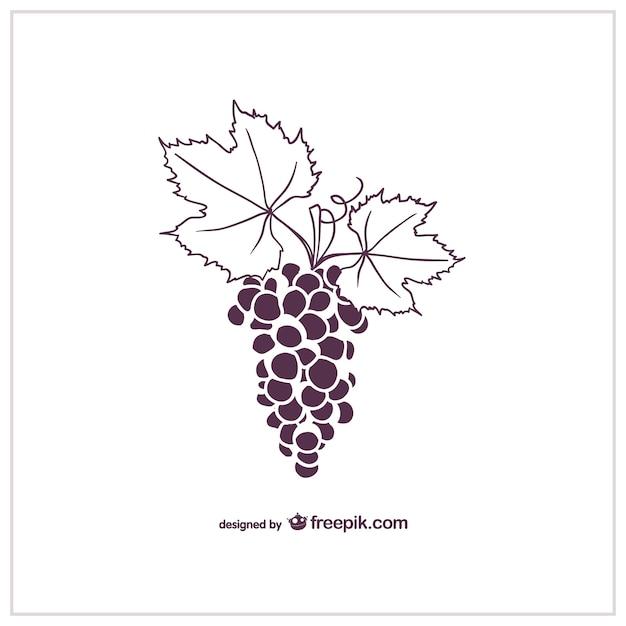 Gráficos vetoriais uvas Vetor grátis