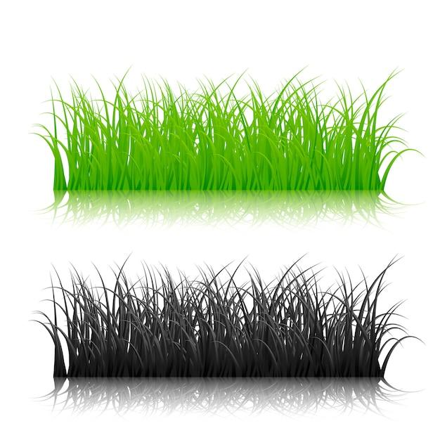 Grama de silhueta verde e preta sobre fundo branco. ilustração Vetor Premium