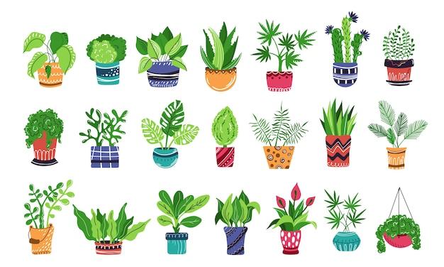 Grande conjunto de plantas em vasos de casa ou flores Vetor Premium