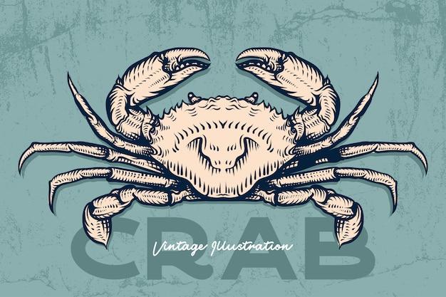 Gravura desenhada de mão de frutos do mar de caranguejo Vetor Premium