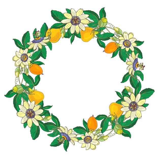 Grinalda com maracujá, passiflora, laranja, fruta amarela. quadro floral Vetor Premium
