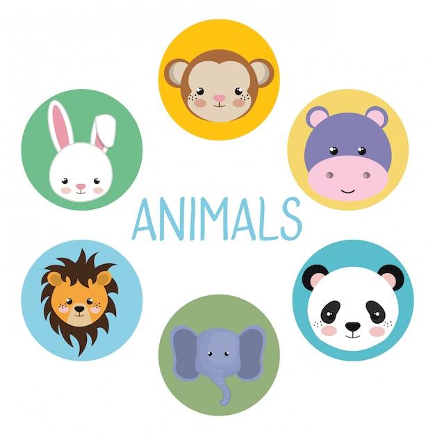 Grupo bonito cabeça animais personagens Vetor grátis