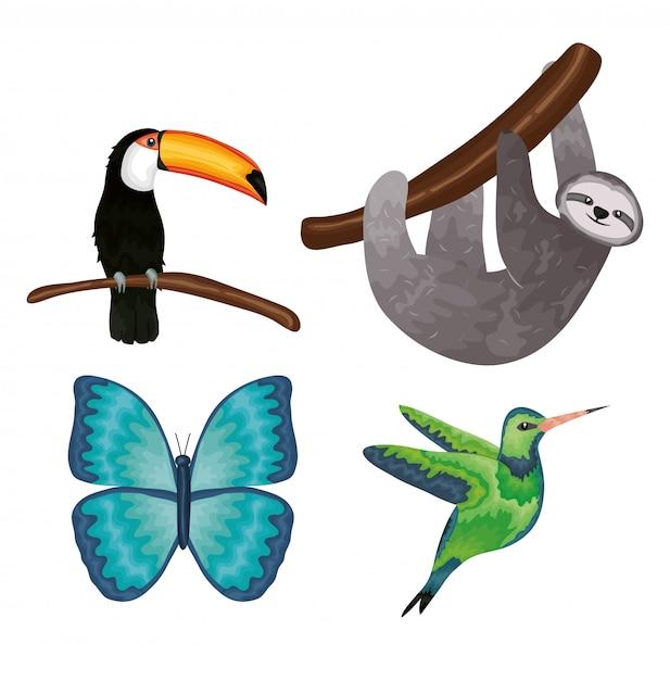 Grupo de animais exóticos e tropicais Vetor Premium
