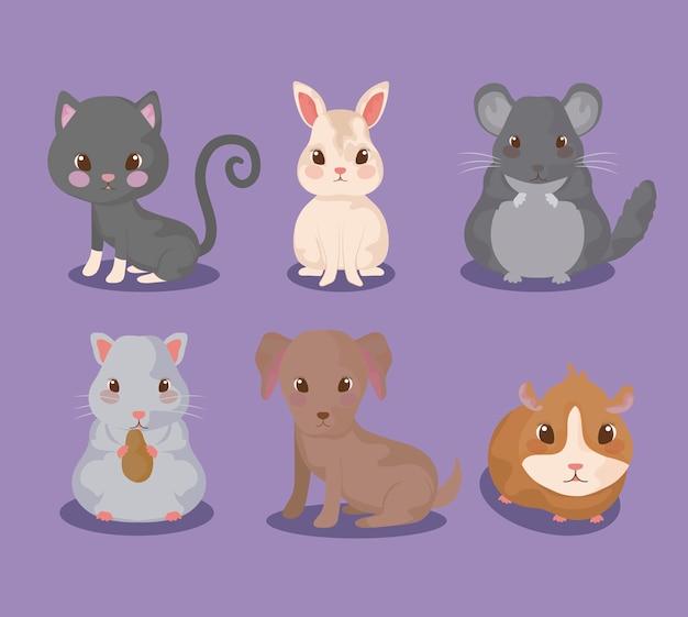 Grupo de animais fofinhos Vetor Premium