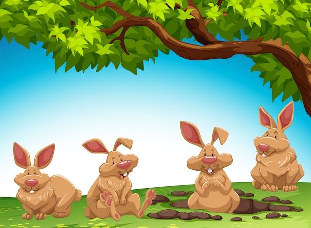 Grupo de coelho cavando chão Vetor grátis