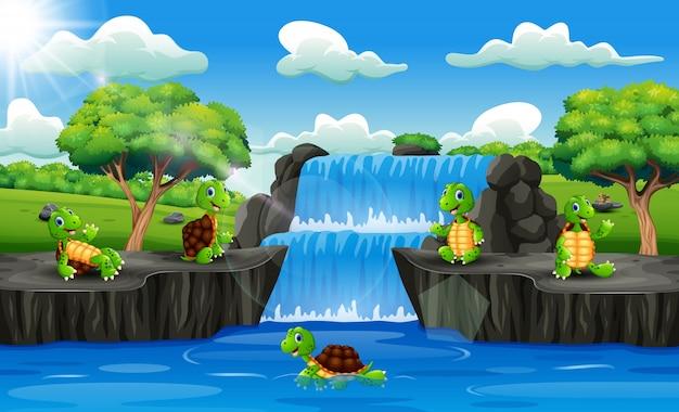 Grupo de desenhos animados de tartaruga na cena da cachoeira Vetor Premium