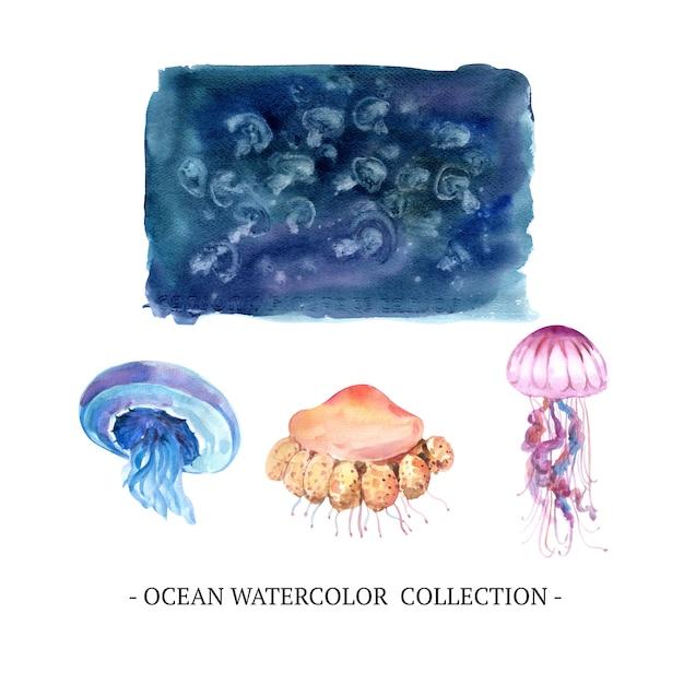Grupo de medusa da aquarela, ilustração no fundo branco. Vetor grátis