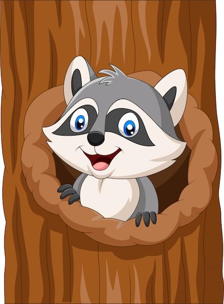 Guaxinim dos desenhos animados sentado no oco de uma árvore Vetor Premium