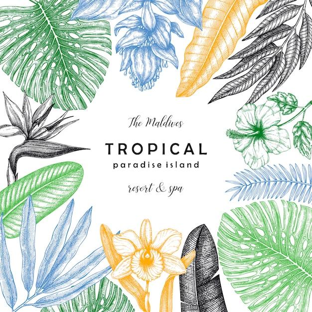 Guirlanda quadrada tropical com plantas tropicais e folhas de palmeira. convite de verão e cartão com elementos botânicos de mão desenhada. modelo de estilo da selva. Vetor Premium
