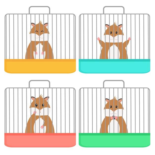 Hamster bonito na gaiola, emoção diferente, estilo simples. isolado Vetor Premium