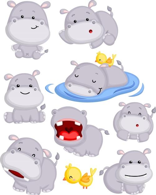 Hipopótamo fofo em poses Vetor Premium
