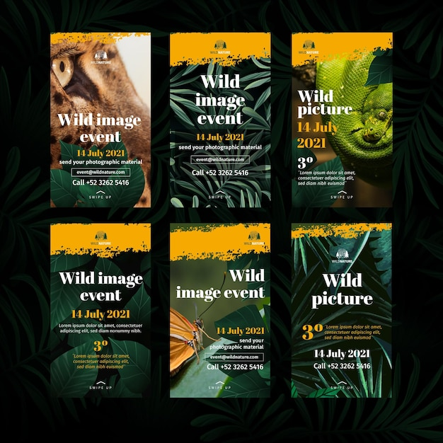 Histórias de instagram de natureza selvagem Vetor Premium