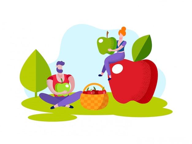 Homem e mulher colhem maçãs vermelhas na cesta. Vetor Premium