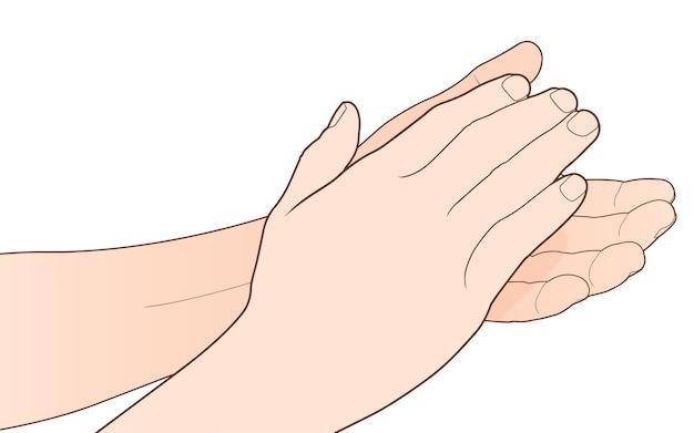 Homem, palmas mãos, aplauso, isolado Vetor Premium