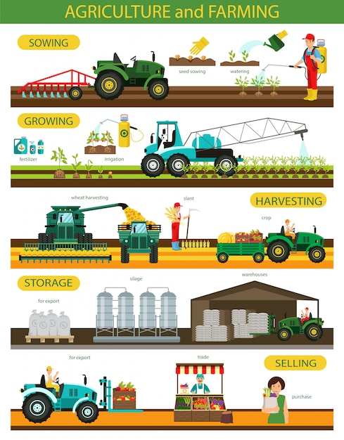 Horizontal flat banner set agricultura e agricultura Vetor Premium