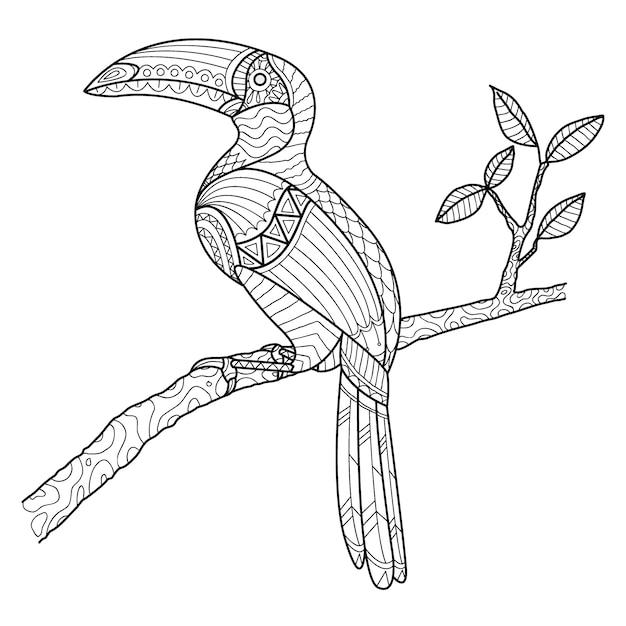 Hornbill coloring page mão desenhada Vetor Premium