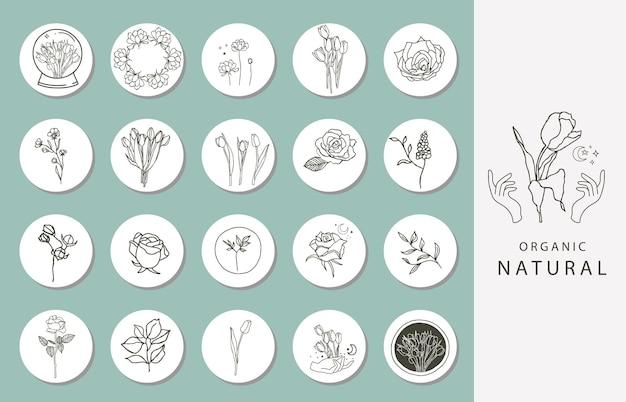 Ícone da capa de destaque do instagram com flor, magnólia e tulipa para mídia social Vetor Premium