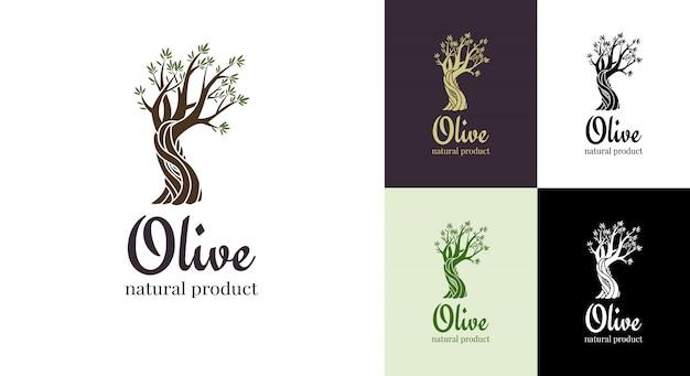 Ícone isolado de oliveira elegante. conceito de design de logotipo de árvore. ilustração de silhueta de oliveira. emblema de planta de árvore de azeite natural Vetor Premium