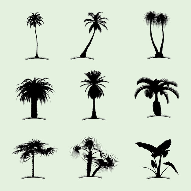 Ícone plano da coleção de árvores com nove palmeiras tropicais de diferentes tipos de ilustração Vetor grátis