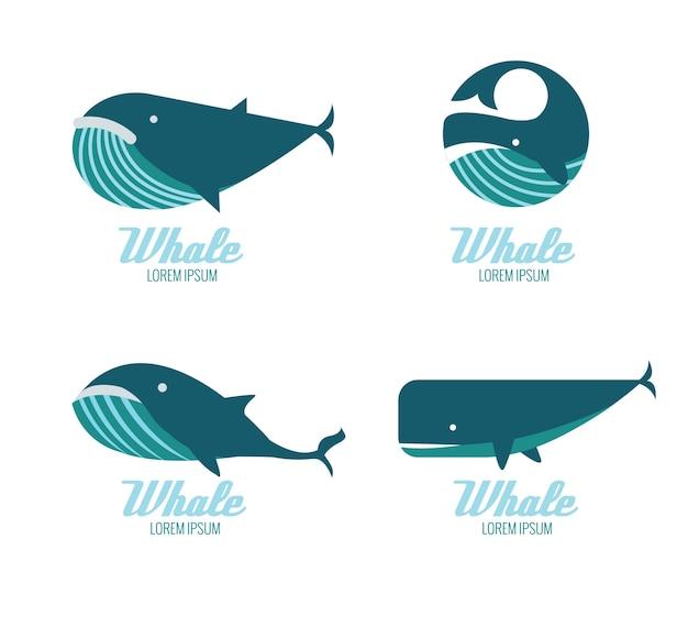 Ícones de baleias. elementos de design planos. ilustração vetorial Vetor Premium
