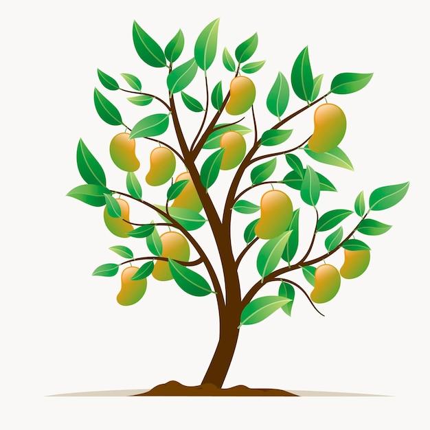 Ilustração botânica plana de mangueira Vetor grátis