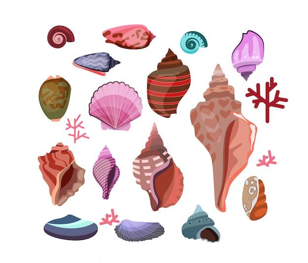 Ilustração conjunto de conchas Vetor grátis