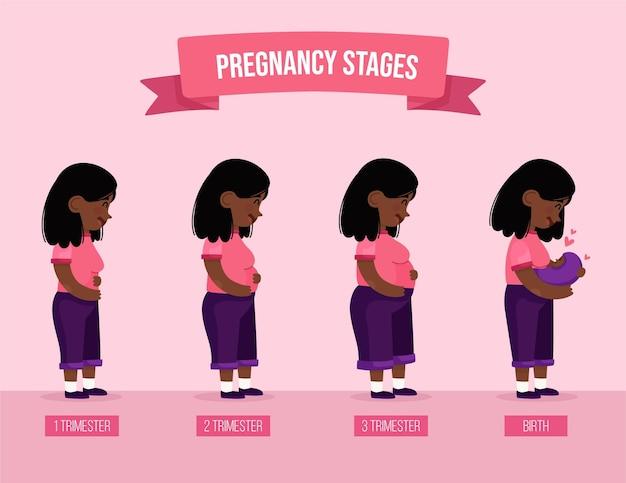 Ilustração das fases da gravidez Vetor Premium
