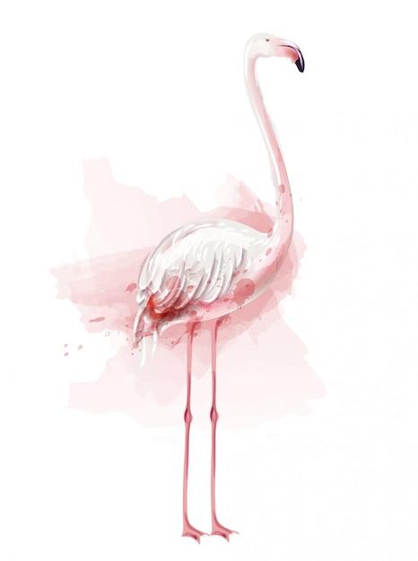 Ilustração de aquarela flamingo Vetor Premium