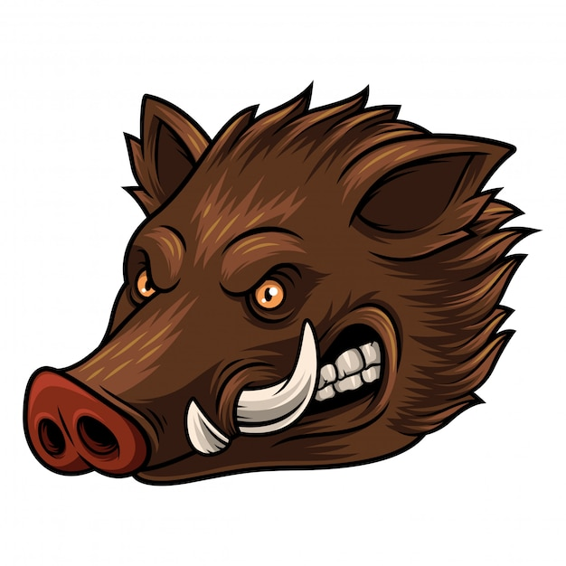 Ilustração, de, cabeça, javali selvagem, mascote Vetor Premium