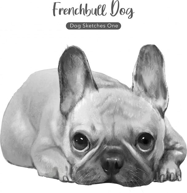 Ilustração de cachorro bull francês Vetor Premium