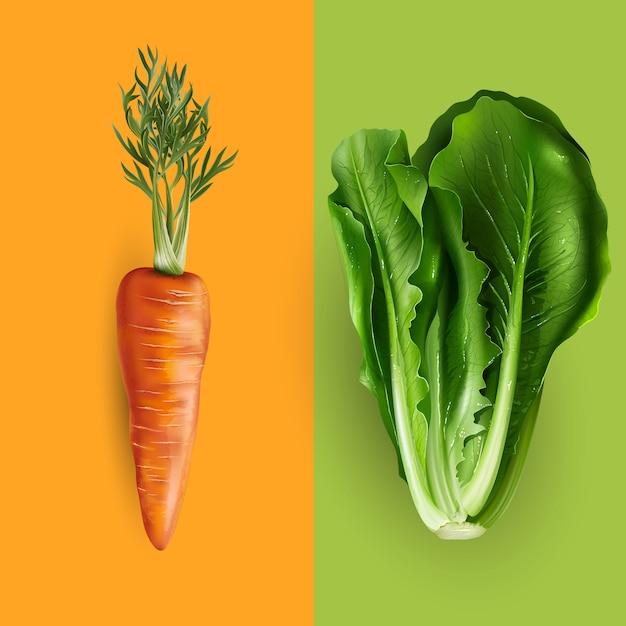 Ilustração de cenoura e alface Vetor Premium