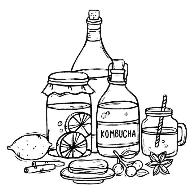 Ilustração de chá de kombuchá desenhada à mão com ingredientes Vetor grátis