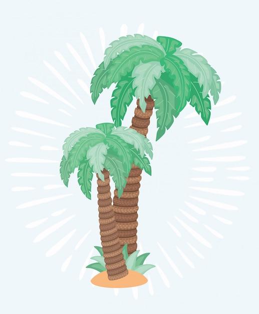 Ilustração de duas palmeiras Vetor Premium