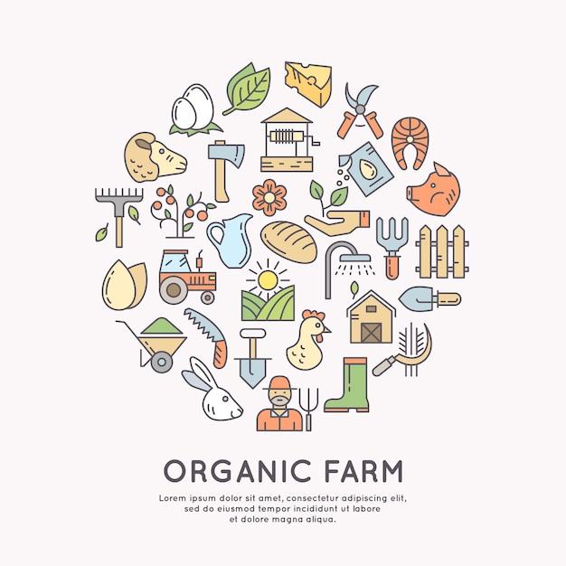 Ilustração de fazenda orgânica. elementos de design, vegetais e frutas no gráfico linear moderno. Vetor Premium
