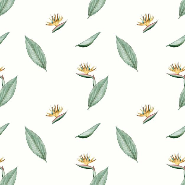 Ilustração de flor ave do paraíso Vetor grátis