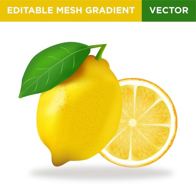 Ilustração de fruta limão Vetor Premium