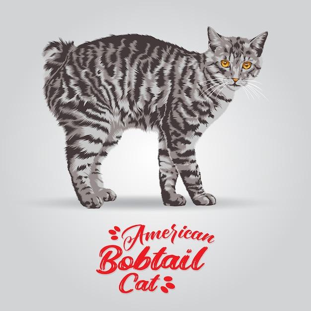 Ilustração de gato americano bobtail. Vetor Premium